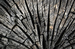Abstract burn wood background Stock Photography