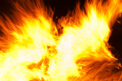 Abstract burning flames Royalty Free Stock Photos
