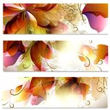 Abstract business cards set in floral style Royalty Free Stock Photos