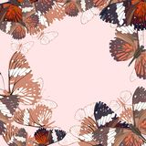 Abstract butterflies background Stock Images