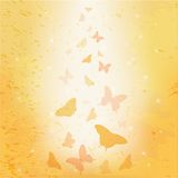 Abstract butterfly Stock Photos
