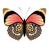 Abstract butterfly Royalty Free Stock Photo