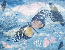 Abstract Butterfly Background Royalty Free Stock Photos