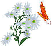 Abstract butterfly, and flower. Stock Photography