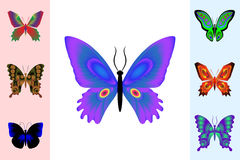 Abstract butterfly set. Stock Image