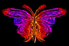 Abstract butterfly silhouette Royalty Free Stock Photography