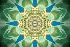 Abstract cactus reflection. Height sided star abstract cactus mandala. Blue, green, yellow and white Royalty Free Stock Images