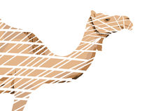 Abstract Camel Royalty Free Stock Photos