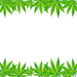 Abstract Cannabis Background Vector Illustration Royalty Free Stock Photography