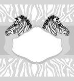 Abstract card with zebra Stock Photography