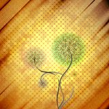 Abstract cardboard texture background with flower Stock Photos