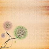 Abstract Cardboard Texture Background With Flower Royalty Free Stock Photos