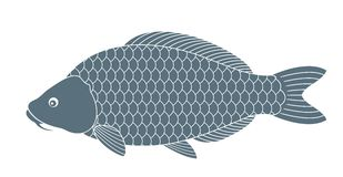Abstract Carp. Vector illustration EPS Stock Photography