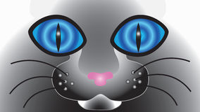 Abstract cat face with big eyes. Royalty Free Stock Images