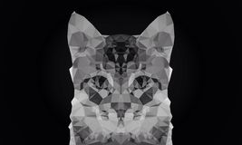 Abstract cat face black and white color low poly bokeh wallpaper Stock Photos
