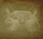 Abstract cat portrait Stock Photos