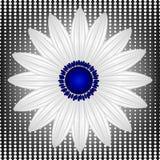 Abstract chamomile on halftone dots background, seamless. Pattern, beautiful illustration Stock Photo