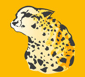 Abstract Cheetah Royalty Free Stock Photos