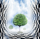 Abstract chess space with trees Stock Image