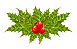 Abstract Christmas bouquet from leaves and berrie Stock Photos