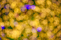 Abstract christmas lights background Royalty Free Stock Image