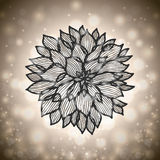 Abstract chrysanthemum flower Royalty Free Stock Images