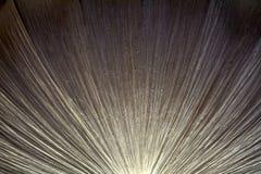 Abstract cijfer aangaande een grijs-wit plafond Royalty-vrije Stock Afbeeldingen