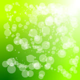 Abstract circle green background Stock Photography