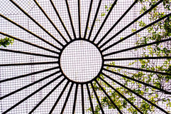 Abstract of circle and lines on square grid. Abstract pattern of roof with circle, lines and square grid with plants growing on it Stock Image