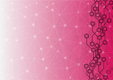 Abstract circuit hexagon  with mesh on pink color Background Royalty Free Stock Photo