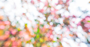 Abstract circular bokeh background Stock Images