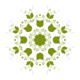 Abstract circular pattern of green. A white background Royalty Free Stock Images