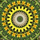 Abstract cirkel bloemenontwerp Stock Foto