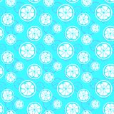 Abstract citrus fruit seamless pattern. Vector Royalty Free Stock Images