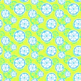 Abstract citrus fruit seamless pattern. Vector Royalty Free Stock Photography