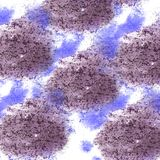 abstract Claret, lilac isolated watercolor stain raster illustra stock photo