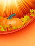 Abstract Classical autumn card with pumpkin. EPS 8 Royalty Free Stock Photo
