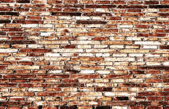Abstract close-up brick wall background Royalty Free Stock Photo