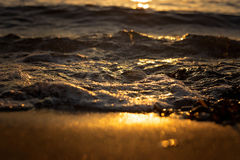 Abstract  - close up of sea and beach sand at sunset. Abstract  - close up of sea and beach sand at golden sunset Stock Photos