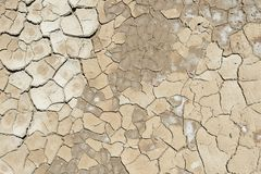 Abstract Closeup of Cracked Earth Texture. Closeup of bark texture for background or texture overlays use royalty free stock photography