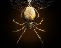 Abstract closeup of a huge spider dangling from its web . 3d rendering stock illustration