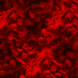 Abstract cloud ink background. Red color. Water paint, art banne Royalty Free Stock Photo