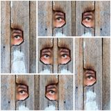 Collage of the human eye, voyeur spying through a hole in the old wooden fence Stock Photography