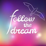 Abstract color background with text and bird Stock Images