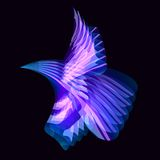 Abstract color bird vector illustration
