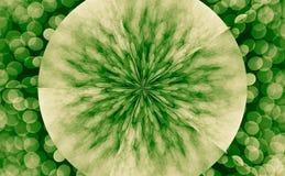 Abstract color circle texture Stock Photos