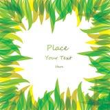 Abstract color leaf background. Vector illustration vector illustration