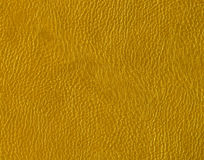 Abstract color leather texture. Stock Photos