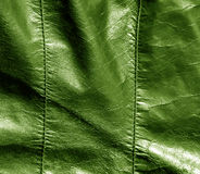 Abstract color leather texture with stiches. Stock Images