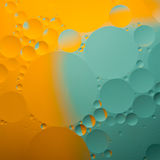 Abstract color oil drops Stock Photography